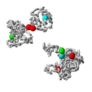 model_chromatin_600x600